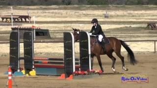 393S Leonie Padgett on Don Schatzeli SR Beginner Novice Show Jumping Twin Rivers Ranch April 2015