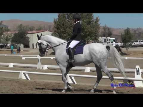 185D Delaney Vaden On Call Me Hobbes Training Horse Dressage Twin Rivers Ranch Sept. 2016