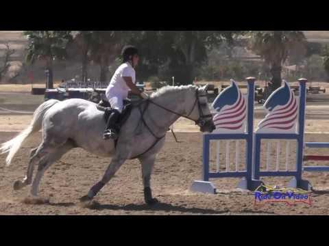359S Anita Parra On Sterling Beginner Novice CH Show Jumping Twin Rivers Ranch Sept. 2016