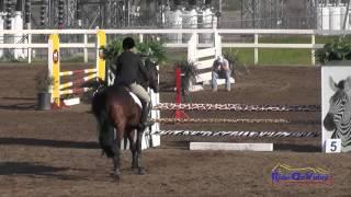 206S Marie Zumwait on Lydia Z SR Novice Show Jumping FCHP February 2015