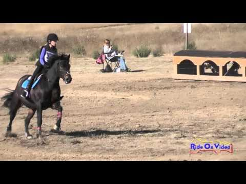 241XC Sophie Horn On Elphin Song Sparrow JR Novice Cross Country Woodside Oct 2015