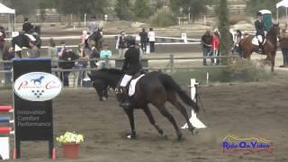 207S Mia Farley on Just a Mystery JR Training Show Jumping Galway Downs Int'l Event Nov 2014
