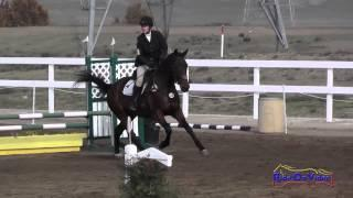 224S Susan Roehl on Bizmark Open Beginner Novice Show Jumping FCHP November 2014