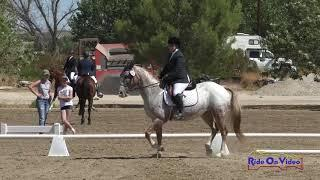282D Rachel Lucas on Secret Sauce SR Beginner Novice Dressage Twin Rivers Ranch Sept. 2019