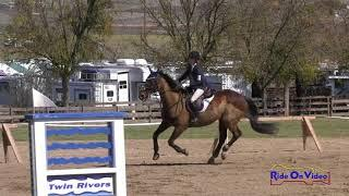 278S Jacqueline Colby on Nautical Ridge JR Beginner Novice Show Jumping Twin Rivers Ranch March 2018