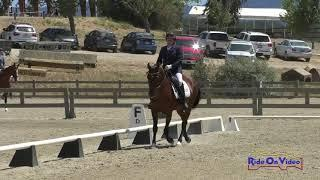 298D Lisa Avila on Panama Red Open Beginner Novice Dressage Woodside August 2019