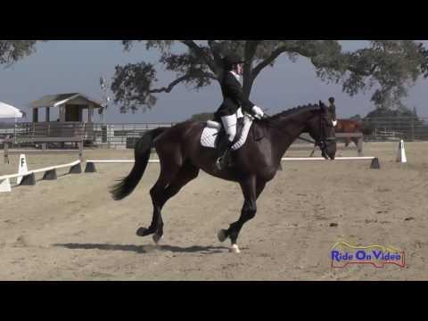 065D Haven Prizmich On Forgotten Emblem JR Training Dressage Woodside August 2016