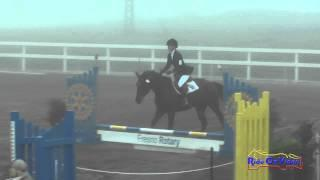 113S Phoebe Hall on Danika DG Intro Show Jumping FCHP January 2015