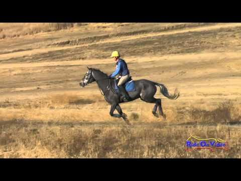 202XC Jolie Wentworth On Cooley On The Rocks Open Training Cross Country Woodside Oct 2015