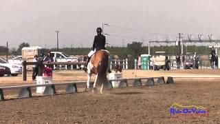 036D Kishorie Weingart on Double Take Preliminary Rider Dressage Fresno County Horse Park Oct 2014