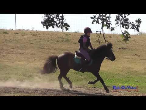 191XC Maxine Beck On Harley Davison JR Intro Cross Country Shepherd Ranch June 2016