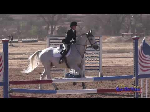 378S Alexa Friesel On Rowdy's Zepl Intro Show Jumping Twin Rivers Ranch Sept. 2016