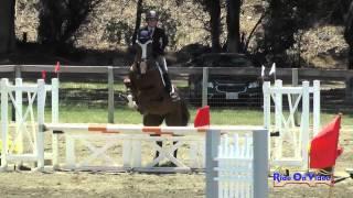 249S Becky Leisz On Calvin Clyde Open Beginner Novice Show Jumping Shepherd Ranch June 2015