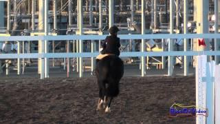 217S Meg Pellegrini on Seren Intro Show Jumping FCHP November 2014