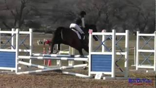 056S Jennifer Wooten Novice Stadium Jumping Twin Rivers HT January 2012 (no audio)