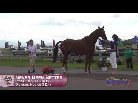 379J2 Olivia Shirley On Never Been Better Novice 3-Day FEI Jog 2 Rebecca Farm July 2016