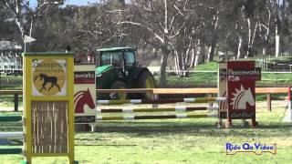 185S Emilie Christian on Timshel Open Novice Show Jumping Galway Downs Feb. 2015