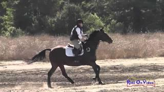 239XC Shannon Schiller on Monkey Business SR Novice Cross Country Woodside Int'l Event Oct 2014
