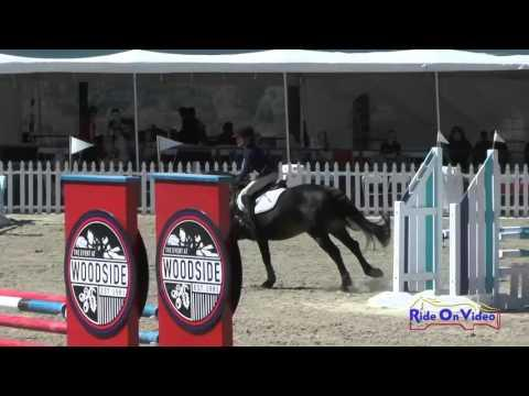241S Sophie Horn On Elphin Song Sparrow JR Novice Show Jumping Woodside Oct 2015