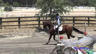 207XC Sharon Steinhauser On Wandering Lily Open Beginner Novice Cross Country Galway Downs May 2015