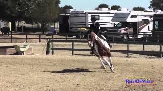 066S Erin Murphy on Athlone Travel On Intermediate Show Jumping Woodside Int'l Event Oct 2014
