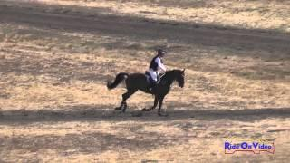 063XC Leah Raheja on Simply a Star Preliminary Rider Cross Country Woodside August 2014