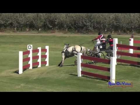 003M Leslie Berndl Advanced Single Pony Marathon Shady Oaks September 2016
