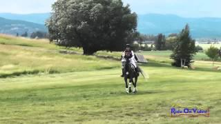 540XC Janice Chase on Imperious JR Novice Cross Country The Event at Rebecca Farm July 2014