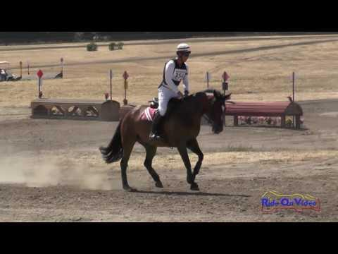 354XC Josh Barnacle On Life Of Wriley Open Beginner Novice Cross Country Woodside August 2016
