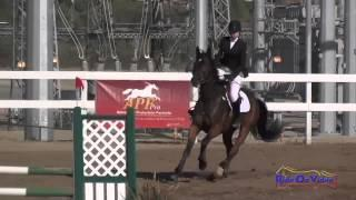045S Madelyn Holtzman Preliminary Rider Show Jumping Fresno County Horse Park Oct 2014