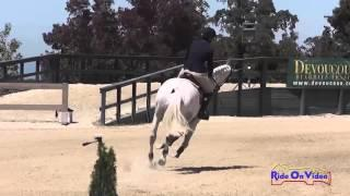 005S Logan Bearden on Catch of the Day Intermediate Show Jumping Woodside August 2014