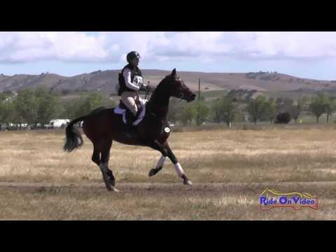 428J Caroline Dein On Tropic Delight YEH 4yr Old Jumping Twin Rivers Ranch April 2016