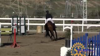 114S Logan Bearden on A Bit Risky Open Novice Show Jumping FCHP November 2014