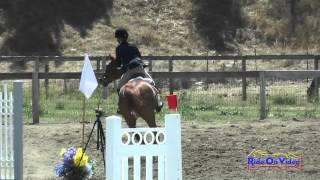 252S Sophie Bluhm On Hunky Dory Intro Show Jumping Shepherd Ranch June 2015