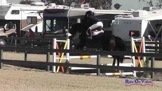 046S Margaret Crow on Remington III CIC1* Show Jumping Woodside Int'l Event Oct 2014