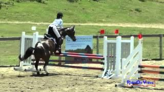 213S Katie Boydston On Can Do Calico JR Beginner Novice Show Jumping Shepherd Ranch June 2015