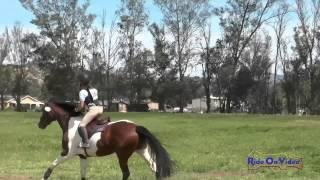 284XC Sidney Bashaw on Candy Pop JR Beginner Novice Cross Country Copper Meadows March 2015