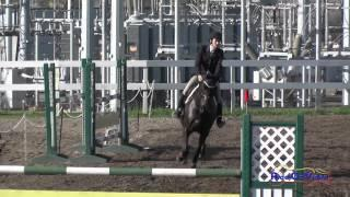 036S Frankie Thieriot Stutes on Chatwin CIC1* Show Jumping FCHP February 2015