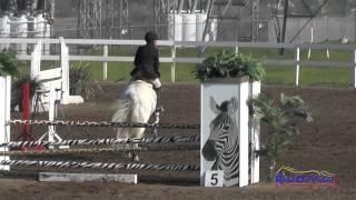 142S Sade Cain on Zeloso Interagro SR Training Show Jumping FCHP February 2015