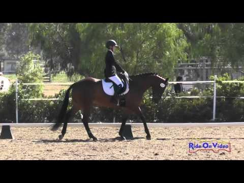 111D Shadney Elwell On Picture Of Ellagance SR Training AM Dressage Copper Meadows March 2016