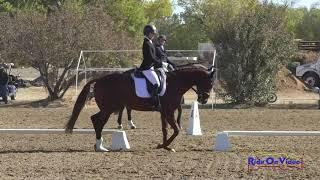 314D Kendra Robison on Carl Open Novice Dressage Twin Rivers Ranch Nov. 2020