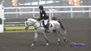 153S Shay Miller on Hey Zeus JR Beginner Novice Show Jumping FCHP November 2014
