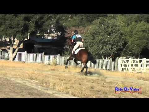 080XC James Alliston On Seven Open Preliminary Cross Country Woodside Oct 2015