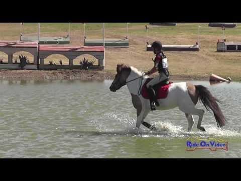 168XC Juliette Kosmont On Banana Split JR Intro Cross Country Shepherd Ranch June 2016