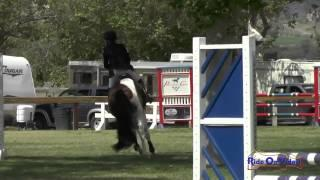 171S Sidney Bashaw On Candy Pop JR Beginner Novice Show Jumping Galway Downs May 2015