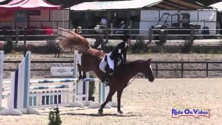 130S Sonya Bengali on Gershwin H.H Training Horse Show Jumping Woodside August 2014