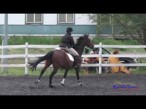 172S Tina Waters On Dunkirk CBF Open Beginner Novice Show Jumping Spokane Sport Horse HT May 2016