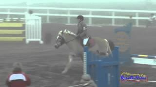 004S Melissa Groom on Wiesenblume Intro Show Jumping FCHP January 2015