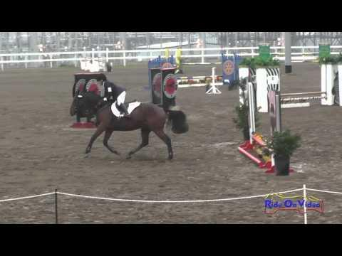 205S Ashleigh Guich On Great Brewski Intro Show Jumping FCHP November 2015