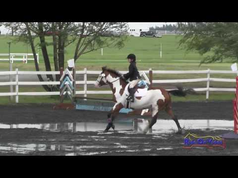 014S Charlotte Perkins On Huckleberry Intro Show Jumping Spokane Sport Horse HT May 2016